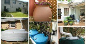 5 dicas para aproveitar a água da chuva em sua casa