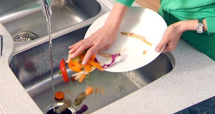 Trituradores de Alimentos: Vale a Pena?